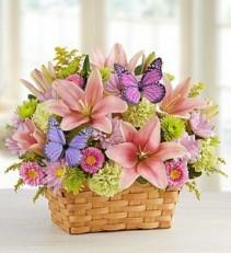 Butterfly Garden Basket Spring