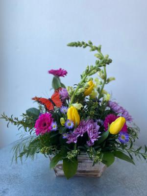 Butterfly Haven Box  in La Grande, OR   FITZGERALD FLOWERS