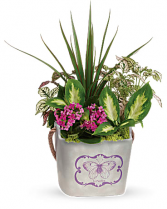 Butterfly Hideaway Planter Local Delivery ONLY
