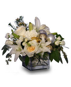 WINTER CELEBRATION of Fresh Flowers in Toronto, ON | THE NEW LEAF FLOWERS & GIFTS