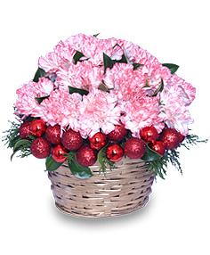 CHRISTMAS CUPCAKE Holiday Flowers