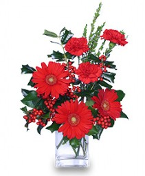 HOLLY JOLLY HOLIDAY Christmas Flowers