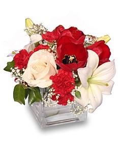 CONTEMPORARY CHRISTMAS  Flower Arrangement