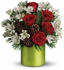 C165 Bright & Cheerful Bouquet
