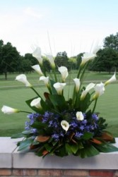 Cala Lilies & Lily of the Nile Custom Arrangement