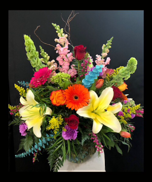 California Dreaming  Large bubble bowl in Chesterfield, MO | ZENGEL FLOWERS AND GIFTS