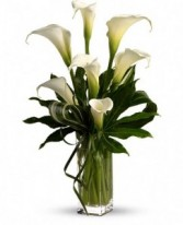 Calla Arrangement