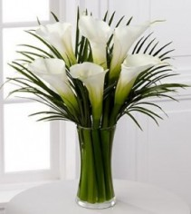 Calla Galore Arrangement