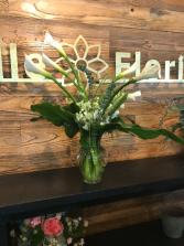 calla lilies any