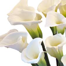 Calla Lilies Candy Bouquet