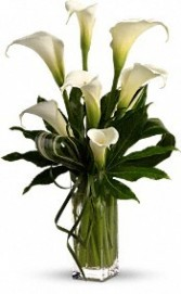 SA 8-Calla lilies in a vase