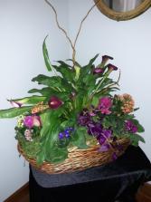Calla lily and violet basket Plant Basket