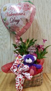 Calla Lily Planter  Plant