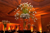 Calla Lily Showstopper  Events