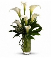 CALLA LILY VASED DESIGN