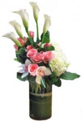 Calla Lovely Please check for availability before ordering.