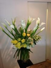 Calla Lilies and roses va-126