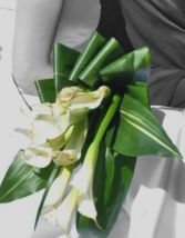 Calla's Rimmed in Gold Wedding Bouquets