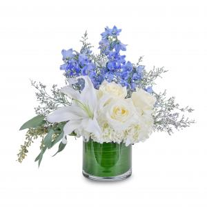 Calm and Cool Centerpiece in Roswell, NM | BARRINGER'S BLOSSOM SHOP