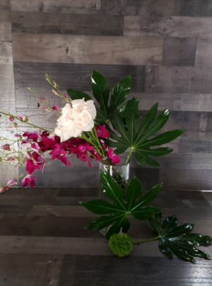 Calm, Cool and Collected  in Chelmsford, MA | East Coast Florist