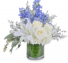 Calm & Cool  Vase