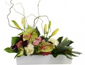Calming Anthurium    in Wilton Manors, FL | LA FLEUR FLORALS & EVENTS