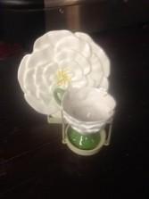 camelia w/flowers 25.00
