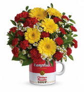Campbell's Healthy Wishes TEV51-1B Bouquet