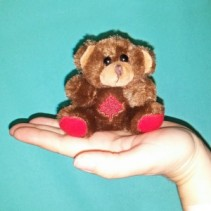 Canada Day Bear Plush