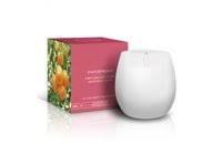Candle 165g Fruits & Passion