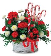 Candy Cane Basket Fresh