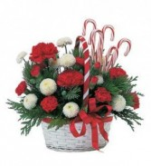 Candy Cane Basket Flower Arrangement - TF86-4wb