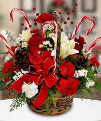 Candy Cane Basket Fresh Christmas