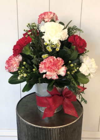 Candy Cane Carnations