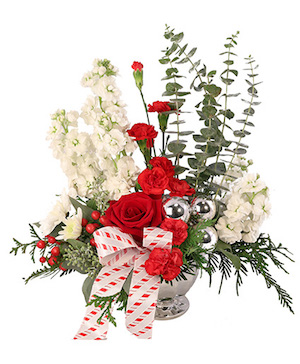 Candy Cane Carnations Christmas Arrangement in Sunrise, FL | FLORIST24HRS.COM