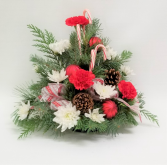 Candy Cane Celebrations  Bouquet