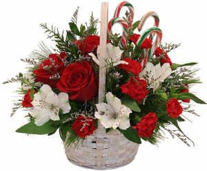 Candy Cane Christmas Fresh Flowers in Canon City, CO | TOUCH OF LOVE FLORIST AND WEDDINGS