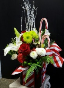 Candy Cane Cube Christmas