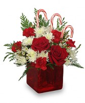 Candy Cane Delight Christmas Vase