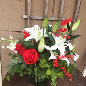 Candy Cane Joy  Christmas/holiday arrangement  in Elgin, IL | FLORAL EXCELLENCE