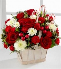 Candy Cane Land Basket Arrangement