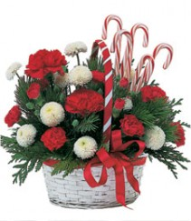 Candy Cane Lane Basket Arrangement