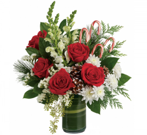 Candy Cane Love Christmas in Paradise, NL | PARADISE FLOWERS & GIFTS