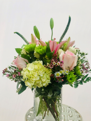 Candy Crush  in Medfield, MA | Lovell's Florist, Greenhouse & Nursery