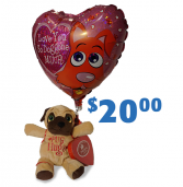 Candy & Cuddles Plush, Mylar Balloon and Chocolate