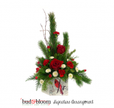*SOLD OUT* Cardinal Christmas Bud & Bloom Signature Arrangement