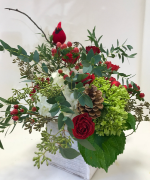 Cardinal Christmas wooden box arrangement in Northport, NY | Hengstenberg's Florist