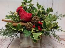 Cardinal Nest Arrangement