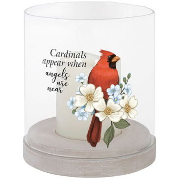 Cardinals Are Near Globe with Candle