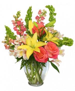 Carefree Spirit Flower Arrangement in Oakland, ME | VISIONS FLOWERS & BRIDAL DESIGNS